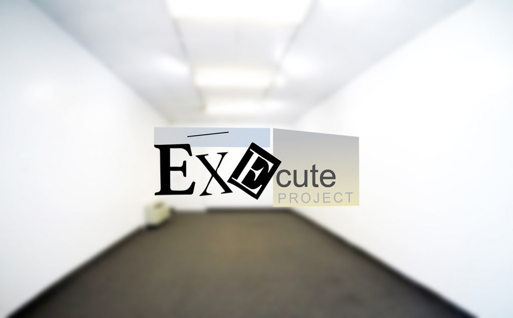 execute project, art gallery, commercial art gallery